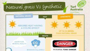 Natural vs synthetic – Turf Australia