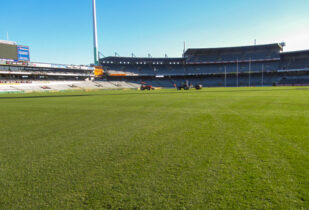 Stadium Blend lawn installation at Domain Stadium Perth