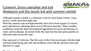 6 Pests – Recent summer rainfall