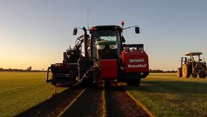 A day in the life of Greenacres Turf Farm