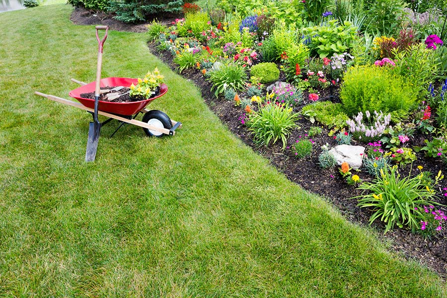 Friendly service with expert advice on installation & lawn care