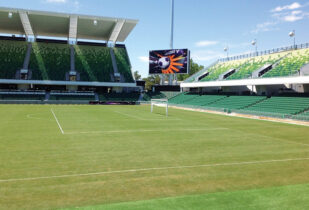 Stadium Blend lawn installation at HBF Park Perth