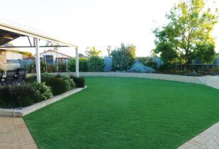 Wintergreen Lawn