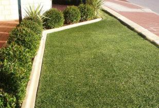Palmetto lawn Mandurah