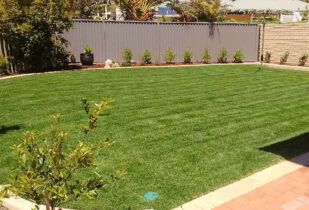 Village Green home lawn Mandurah